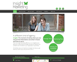 Screenshot of Insight Marketing website by Jukah Digital